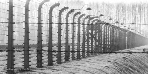 Holocaust Education: Creating a critical bridge between history and empathy