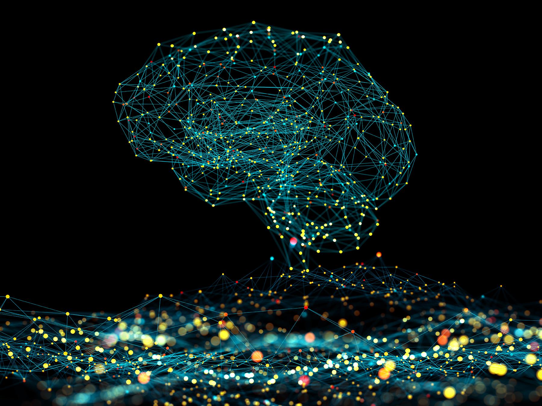 The Neuroimmune System and Brain Development