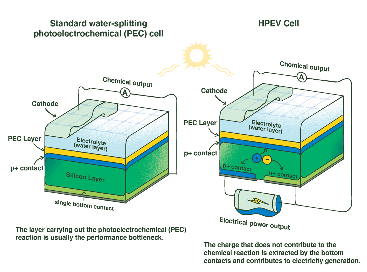 Comparison of PEC cell and HPEV cell
